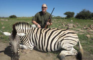 Schalk Pienaar Safaris Namibia ~ Burchell's Zebra Hunting