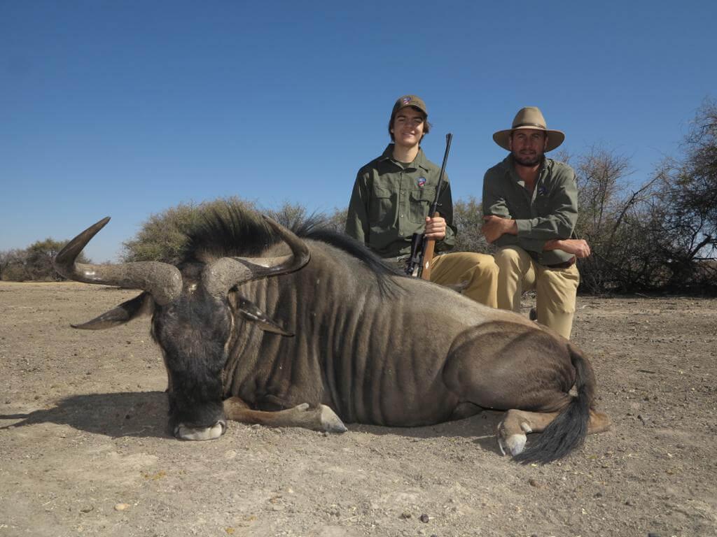 blue wildebeest trophy