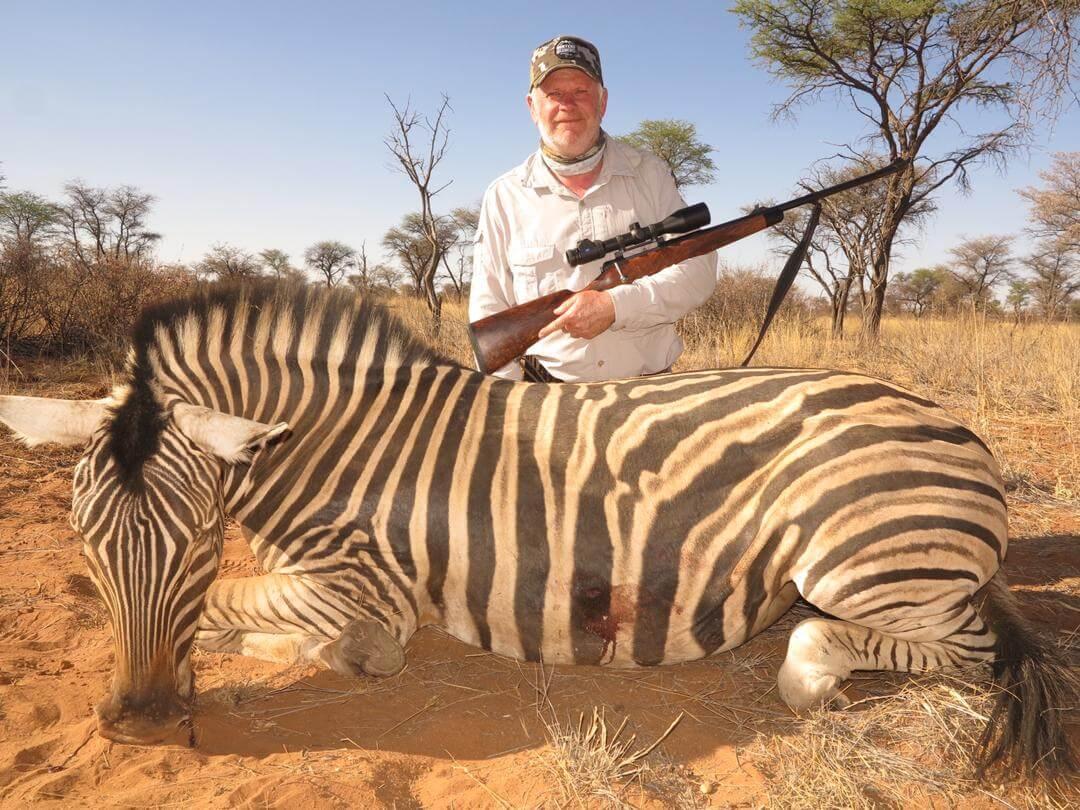 zebra hunt africa