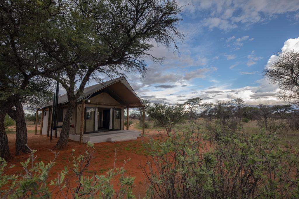 kalahari hunting camp