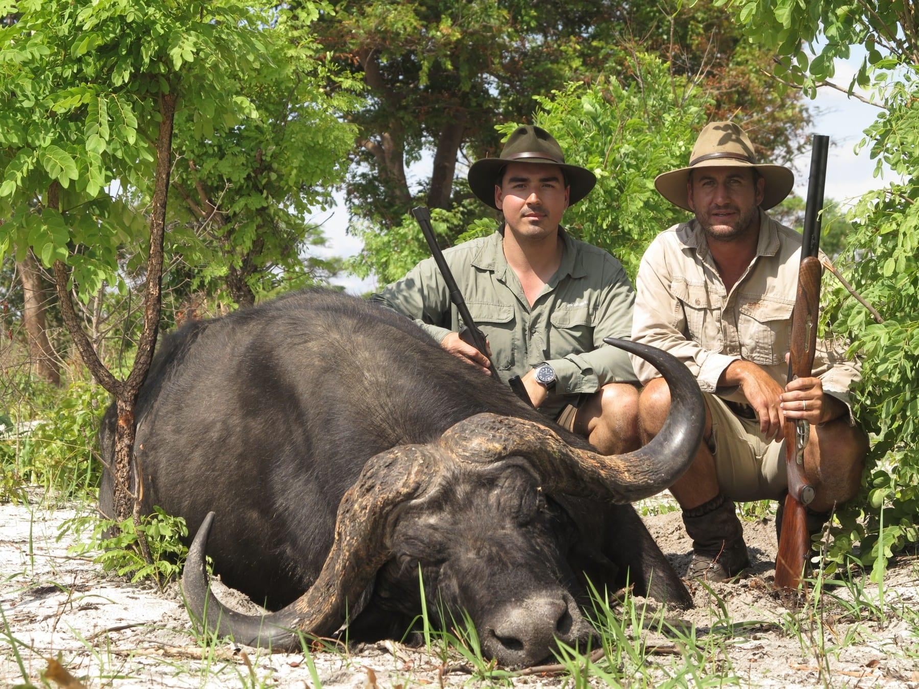 dangerous game hunts namibia