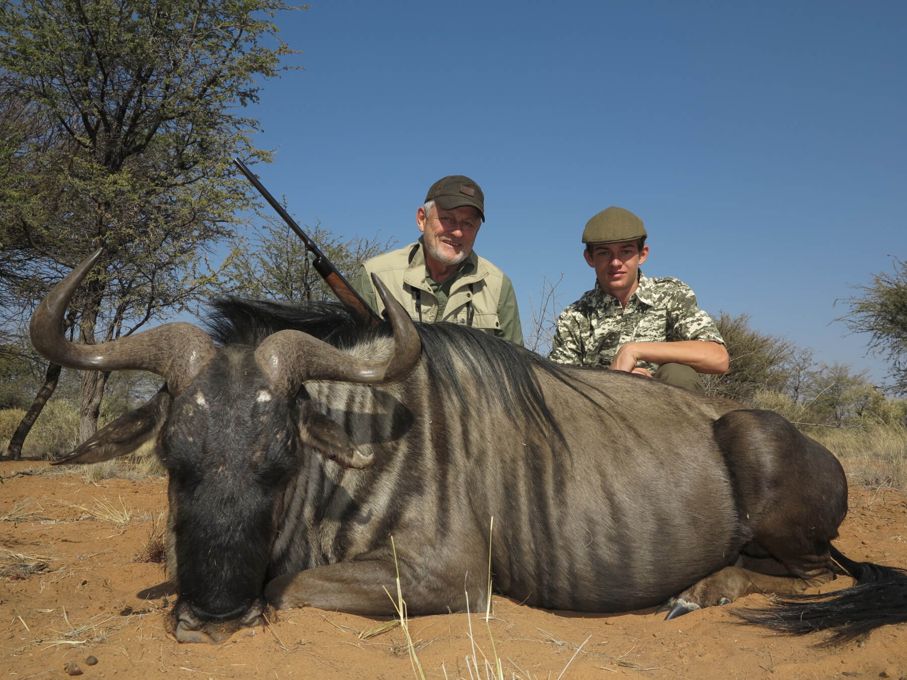 Schalk Pienaar Safaris Namibia ~ Blue Wildebeest Hunting