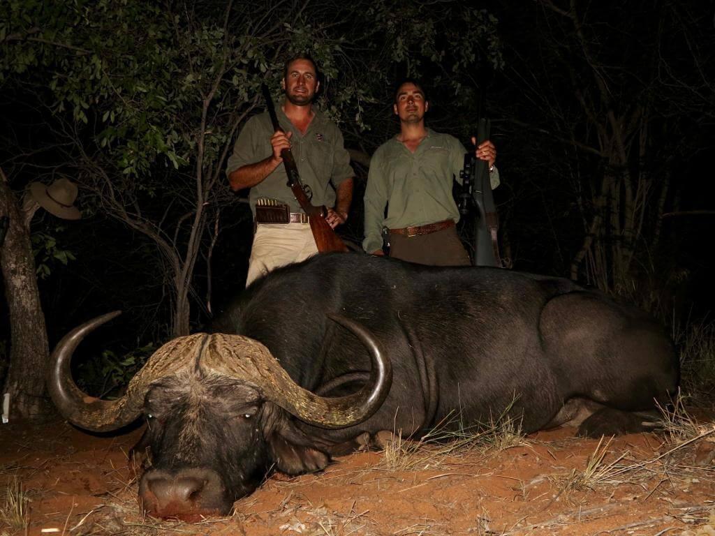 Schalk Pienaar Safaris Namibia ~ Cape Buffalo Hunting